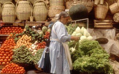 La COVID-19 incrementa la pérdida de alimentos frescos en los países de bajos ingresos